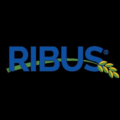 Ribus